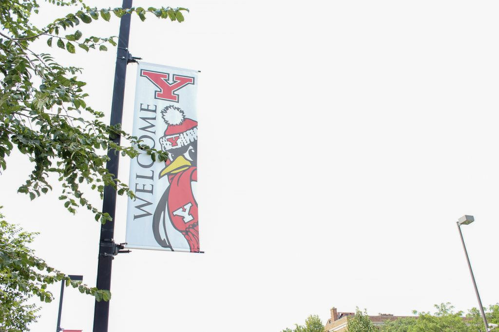 YSU Community Adapts to Distance Education Mid-Crisis